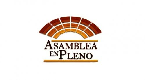 ASAMBLEA EN PLENO