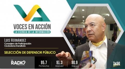 Luis Hernández - Consejero del CPCCS-T