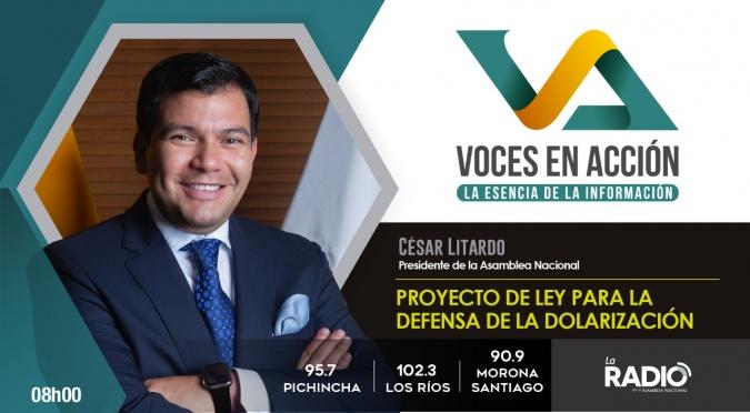 César Litardo: Proyecto de Ley para la Defensa de la Dolarización
