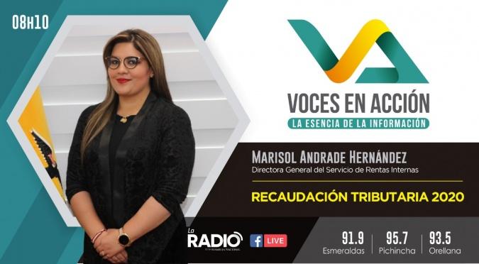 Marisol Andrade Hernández: Recaudación Tributaria 2020