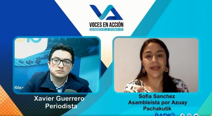 Sofia Sanchez: Propuesta de enmienda constitucional