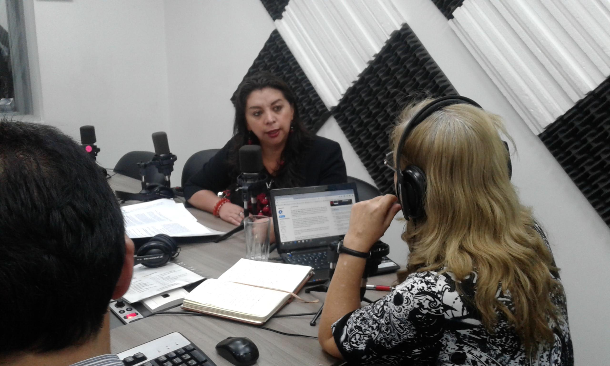 Liliana Guzmán:Ley que evita especulación de Tierras aplica a ganancia extraordinaria
