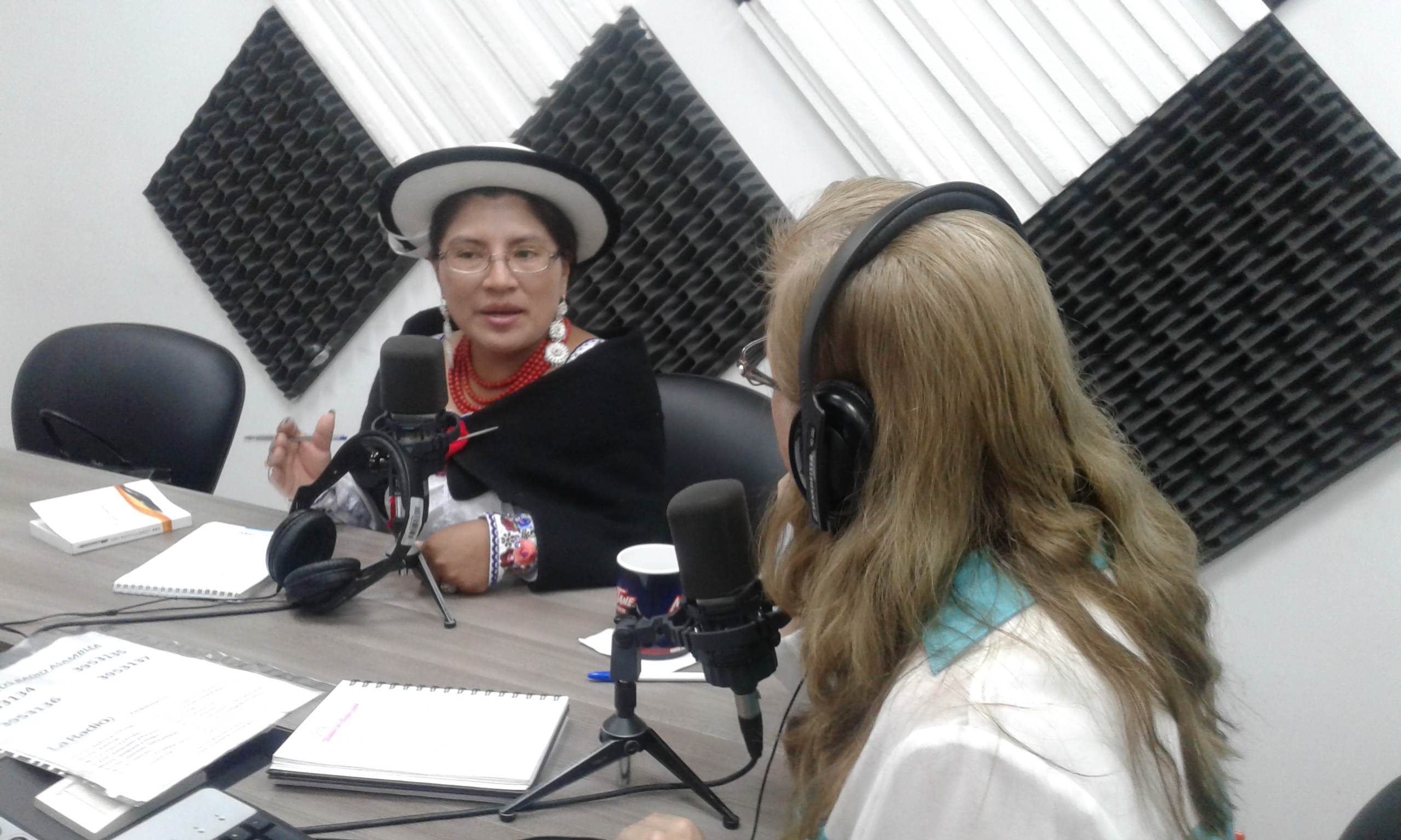 María Encarnación Duchi: Pedido de amnistías.