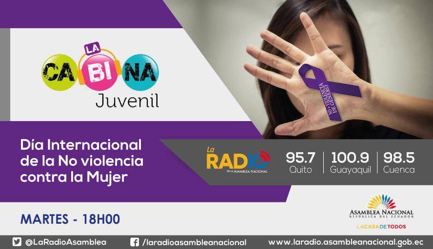 """Día Internacional contra la """"No violencia de la mujer"""""""