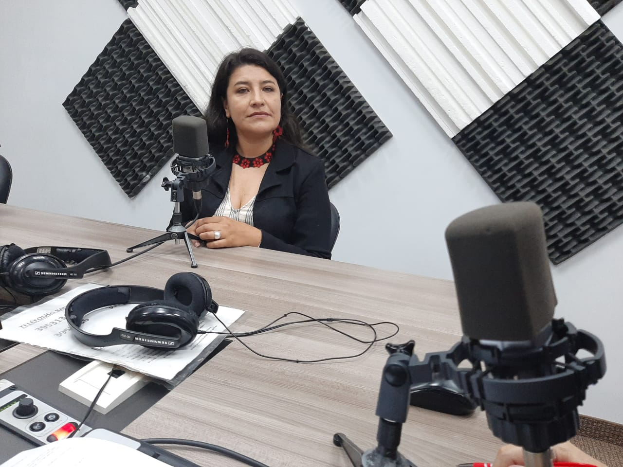 "Grace Vásquez:  Denuncias de maltrato en ""Guaguas Centros"""
