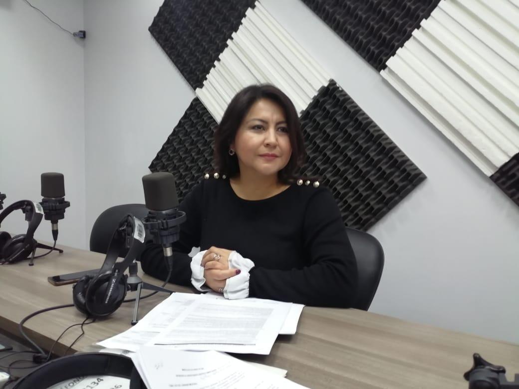 Ximena Peña: Veto reformas al Código de la Democracia.
