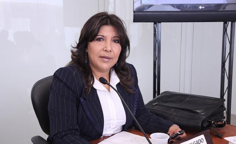 Silvia Salgado, Parlamentaria Andina