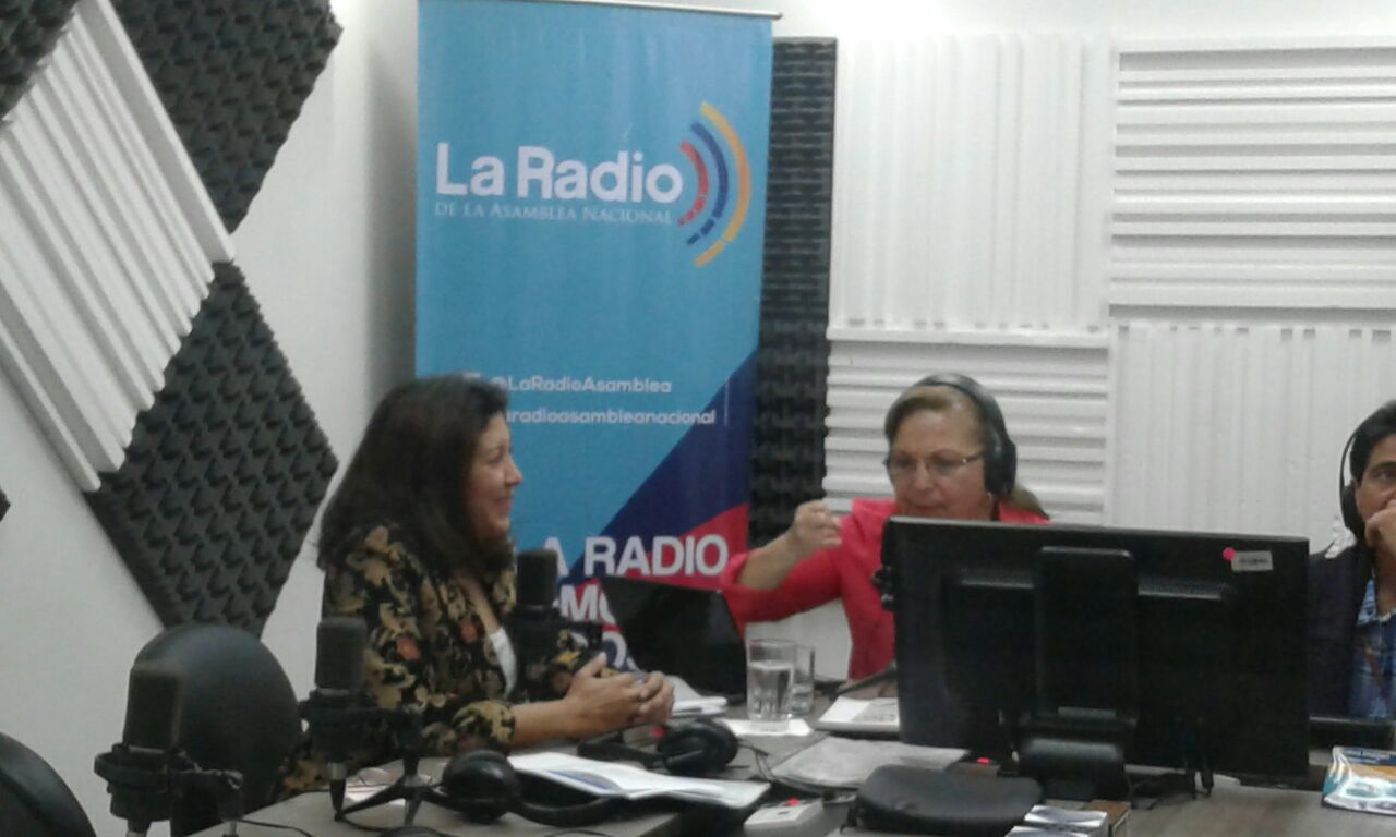 Nubia Villacis, vicepresidente de CNE
