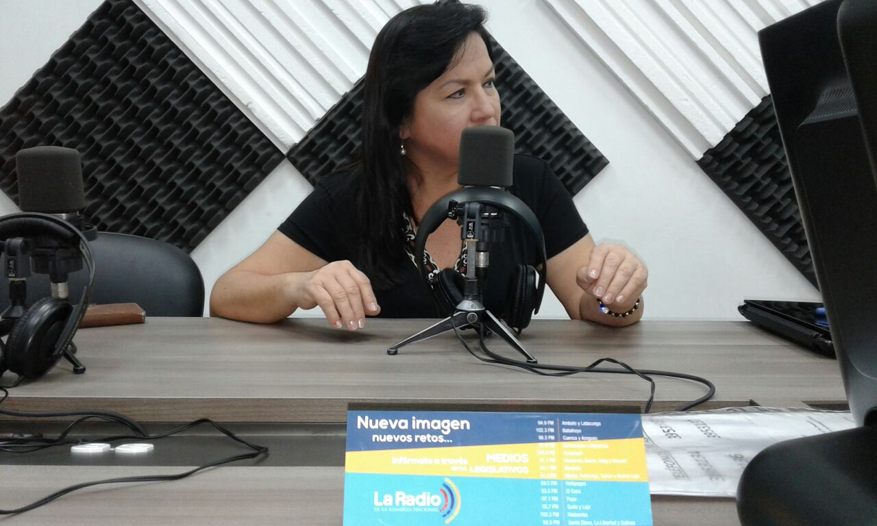 Gina Godoy, asambleísta
