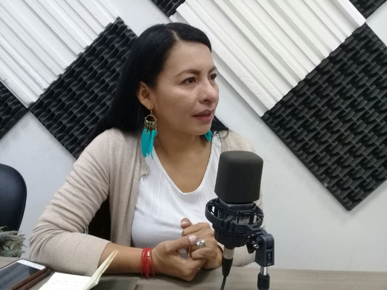 Diana Atamaint: Reunión de la CONAIE con el presidente Lenin Moreno.