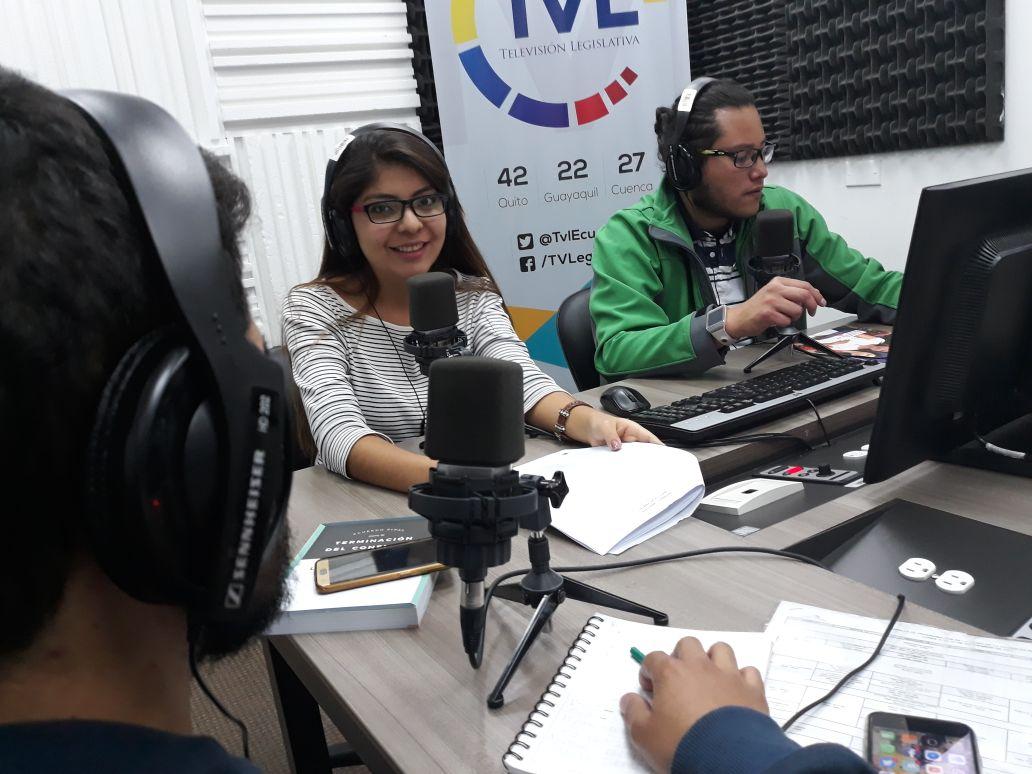 Las FARC como organización política