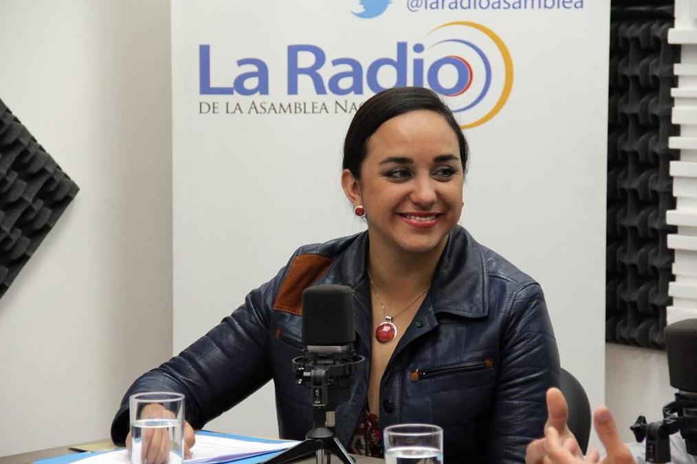 LEY ORGÁNICA DE LOS CONSEJOS NACIONALES PARA LA IGUALDAD